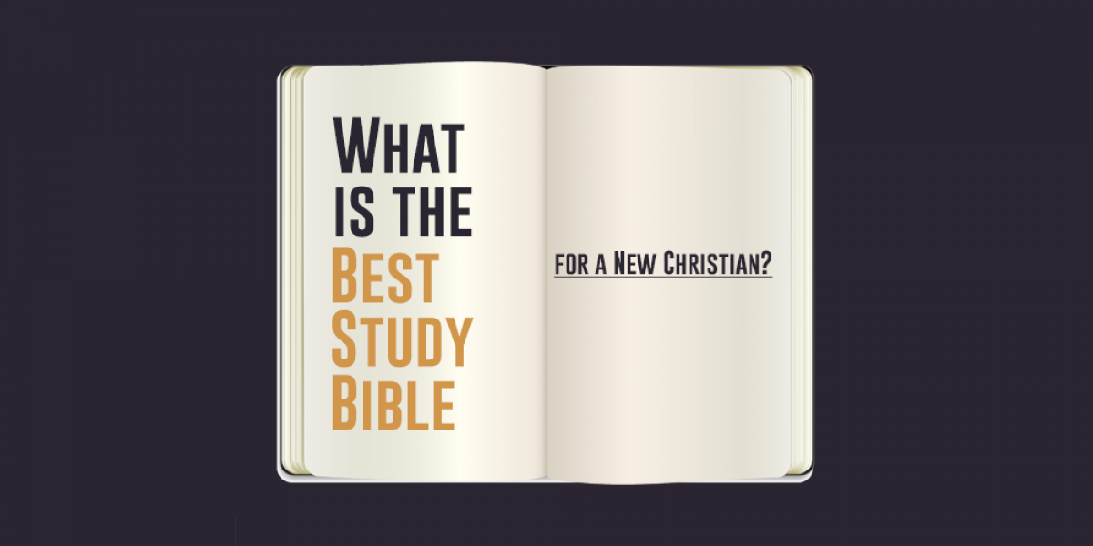 What is the Best Study Bible for a New Christian?