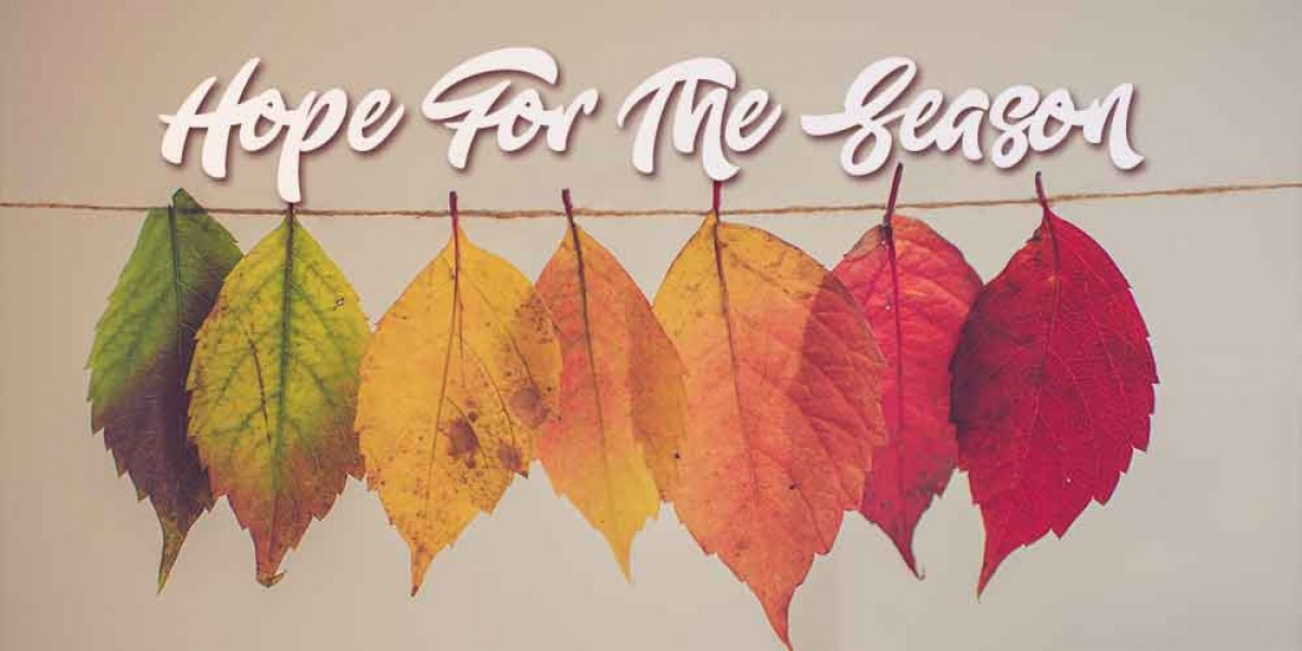 Top Christian Songs of Fall 2020: Hope for the Season